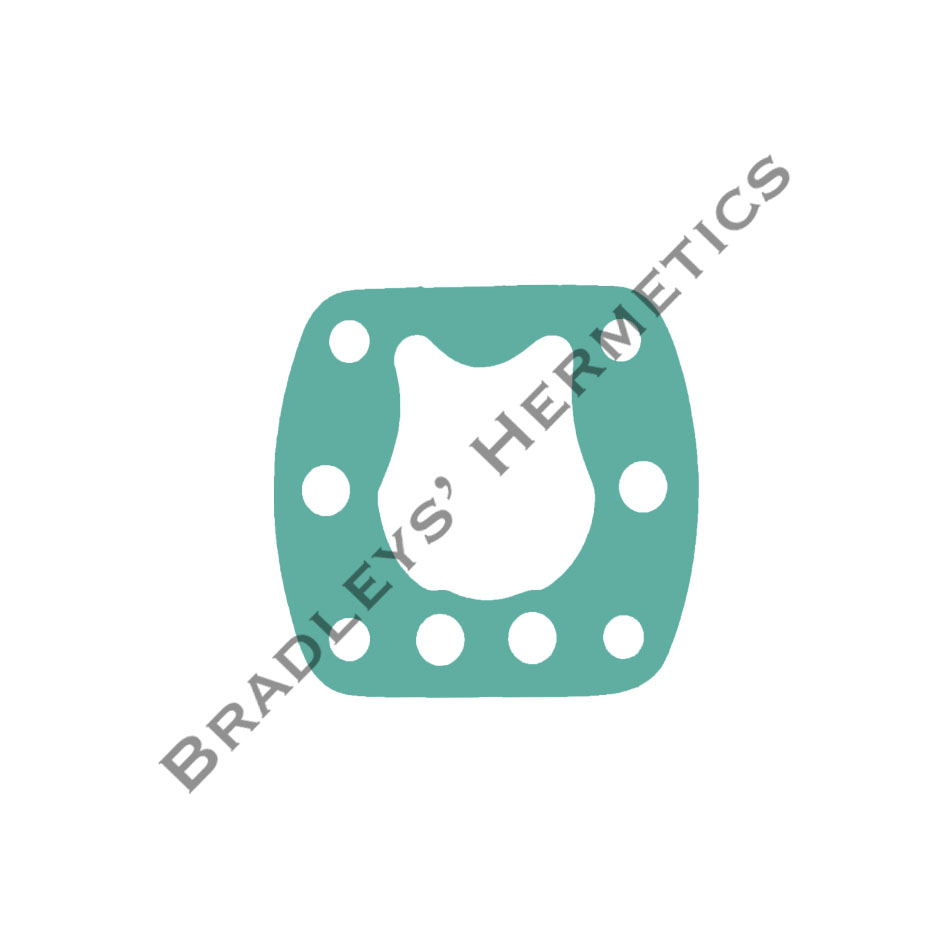 GKT-6173 Gasket; Valve Plate (Made in the USA) R/N NB4
